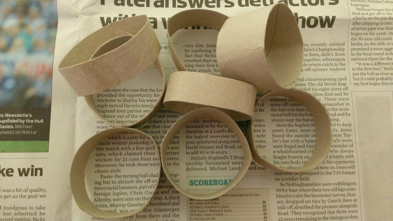 Cut Up Toilet Rolls